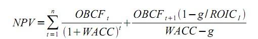 Abbildung 1: Formel Net Present Value