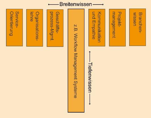 Beispiel eines T-Shaped WfM-Experten
