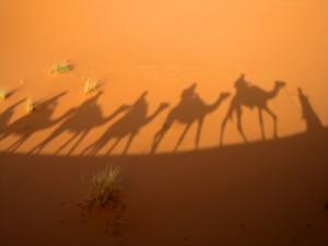 schatten einer karavane die durch die wüste streift