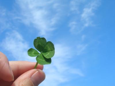 Wie Sie systematisch Ihr Glück finden