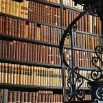 Sein oder Nichtsein Abbildung 2 Bibliothek