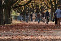 Menschen gehen an einem Herbsttag im Park spazieren und fahren Fahhrad