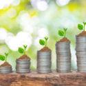 Bäume wachsen in einer Folge von Keimung auf Stapel von Münzen