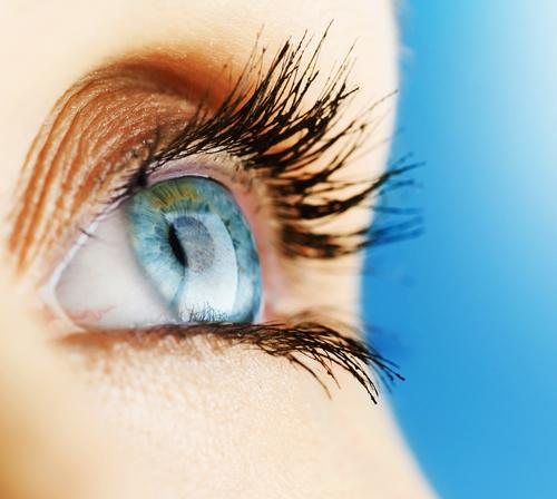 Mit dem richtigen Augentraining fit durch den Büroalltag