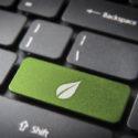 Grüne Blatttastatur, Umgebungshintergrund