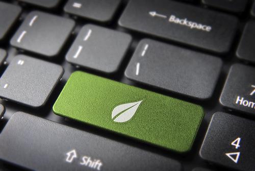 Umweltschutz im E-Commerce: Schwächen in Stärken umwandeln