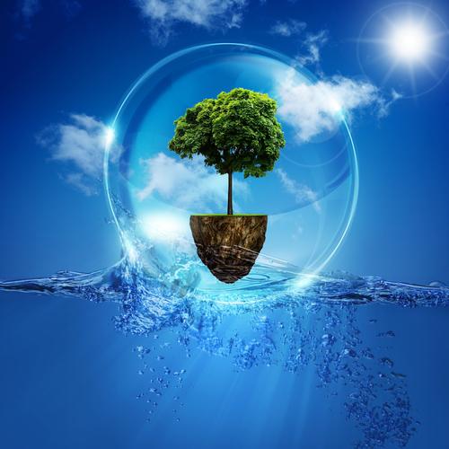 Green Marketing alleine reicht nicht – Authentizität zählt
