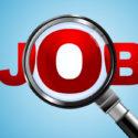Job Suche