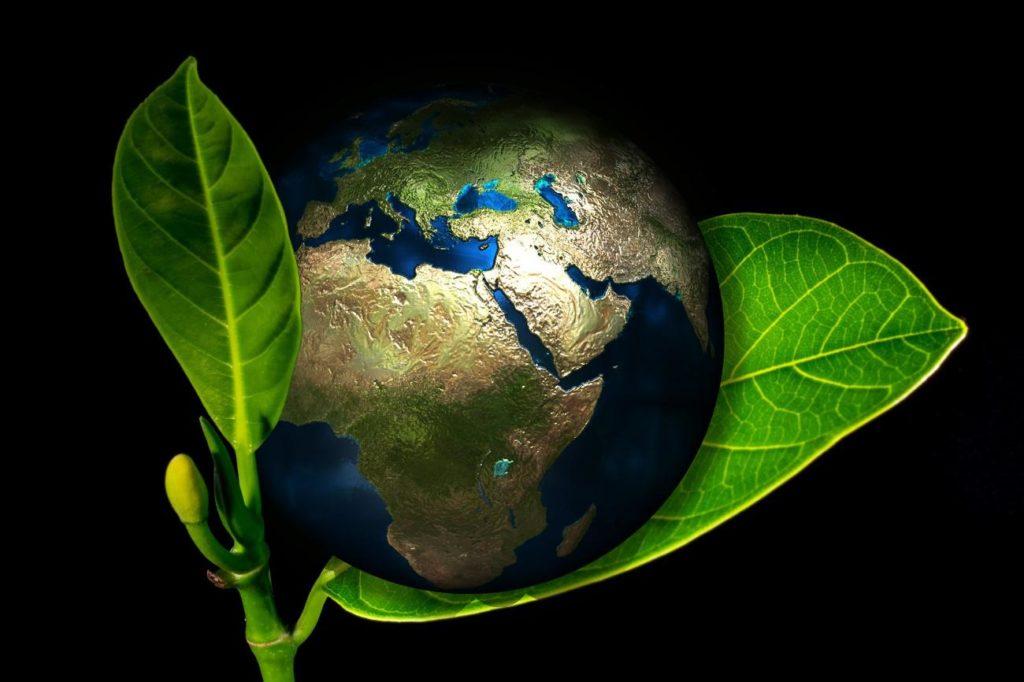 Nachhaltige Unternehmensführung – was steckt dahinter?