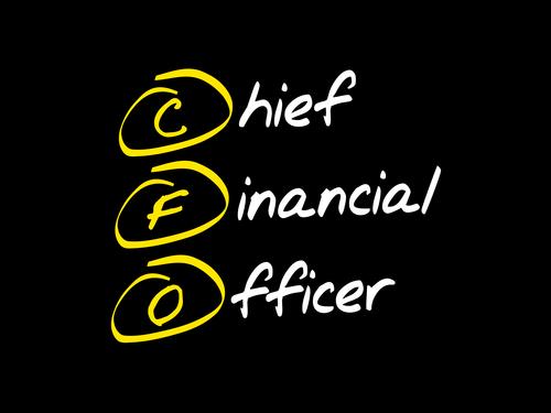 Chief Financial Officer als Navigator im digitalen Wandel