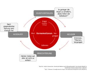 Kernemotionen im Change-Prozess