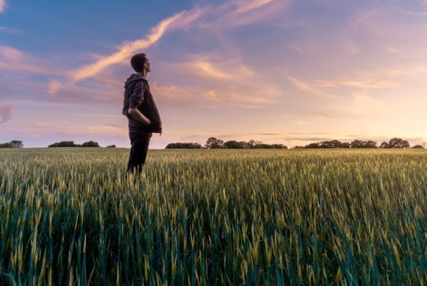 Ökologische Werbeartikel: Mit grünem Gewissen überzeugen
