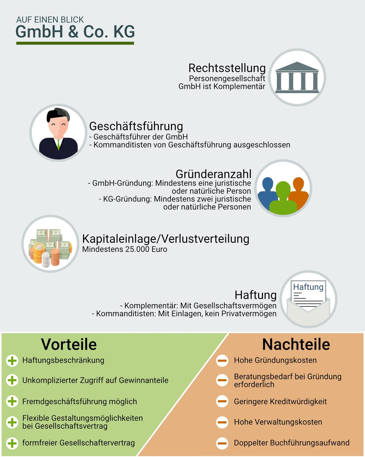 Infografik: GmbH und Co. KG