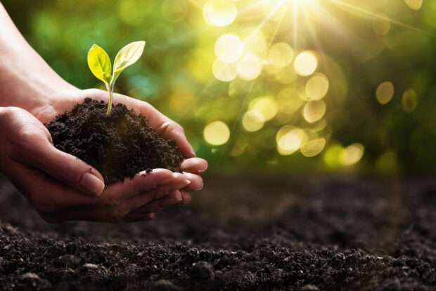 Nachhaltigkeit ist ein Top-Thema für Start-ups